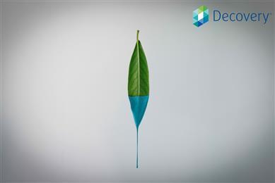 DSM introduceert zelfmatterende bio-based afwerklaag
