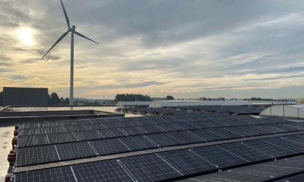 Honderden zonnepanelen op het dak bij T&G Wood